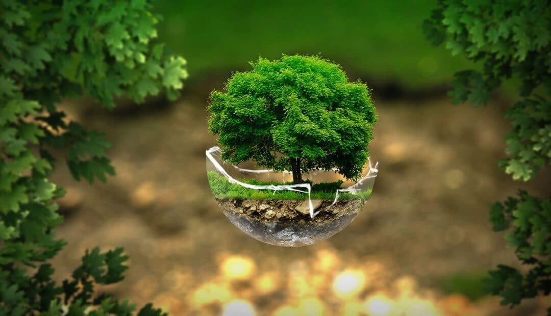 Semaine du climat: des conférences sur le thème de l'environnement